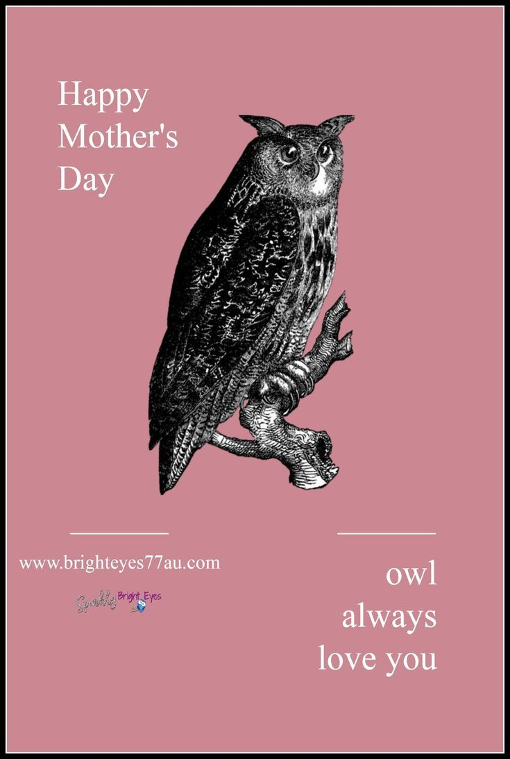Quote_Happy Mothers Day_Owl Always Love you_Mothers Day Special_Jamberry Mothers... #happymothersday2018 #happymothersday2018inpakistan #happymothersday2018quotes #happymothersdaycake #mothersday #mothersdaysongs happymothersdaywishes.info/quote_happy-mo…
