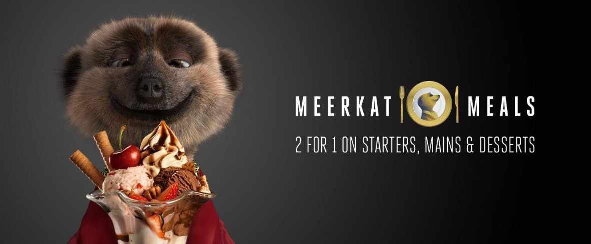 Image result for meerkat meals