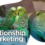 Image for the Tweet beginning: Relationship marketing differs from other
