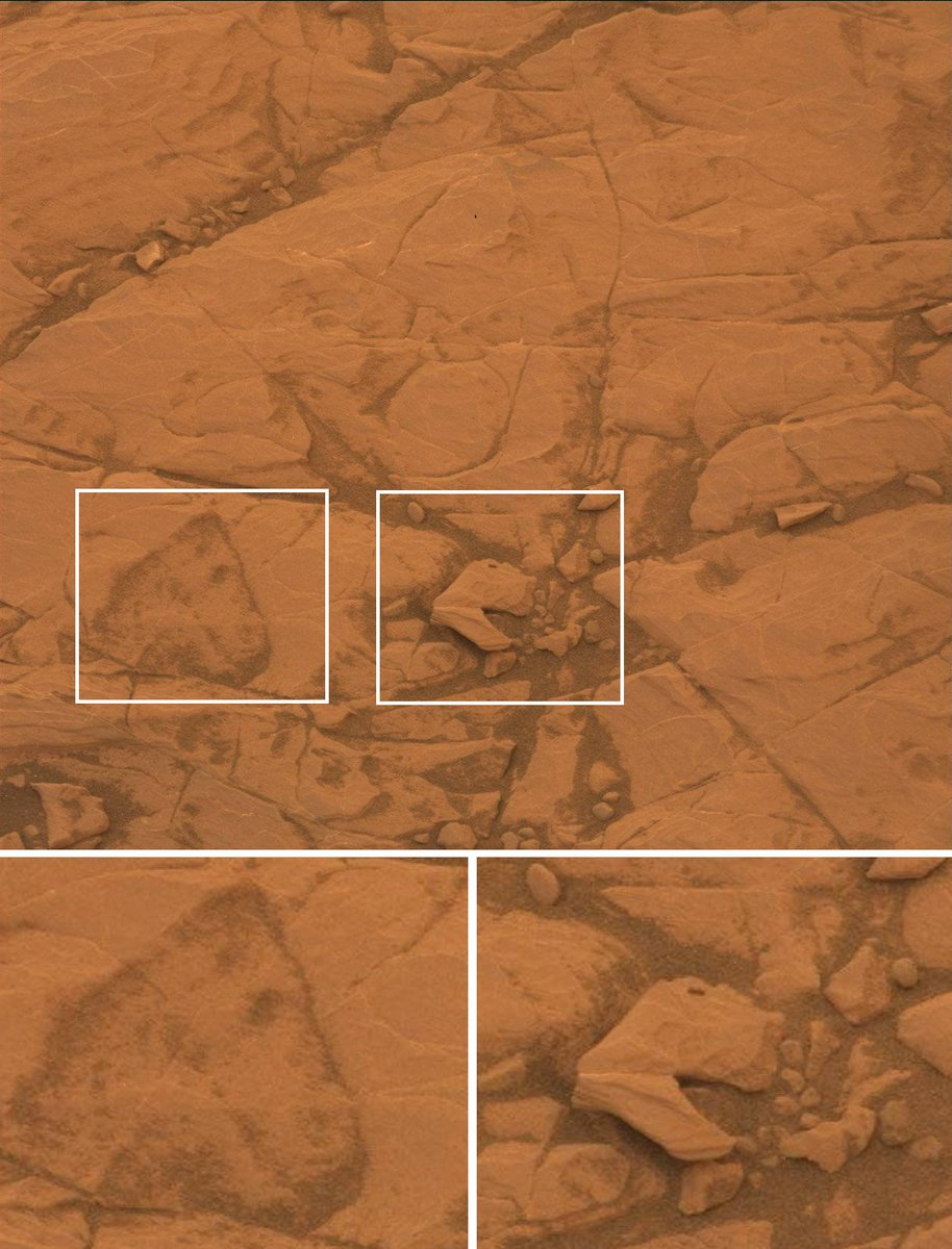 Foto des Mars-Rovers Curiosity von gestern. Bemerkenswert ist der nur grob behauende prämarsianische Pacman-Stein (Mitte) sowie die Ritzzeichnung eines freundlich lächelnden Pferdekopfs (links). Bild im Original: https://t.co/skhuVXzC0g