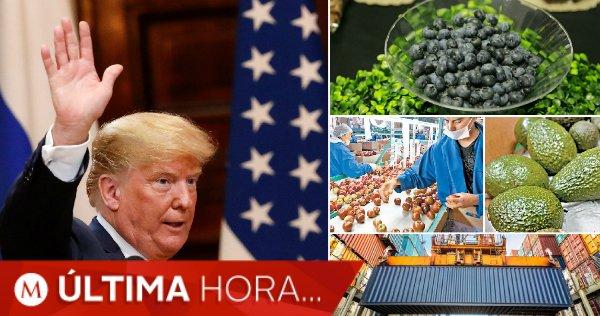 #ÚLTIMAHORA | En 10 días, México responderá a denuncia de #EU ante la #OMC por aranceles https://t.co/NMxwfIZYzw