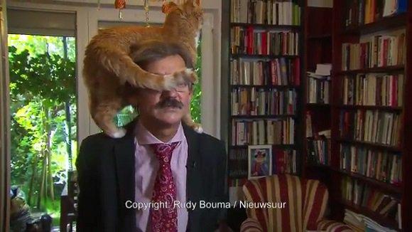 【昨日の人気記事】「涙を流して笑った」「猫にしか目がいかない」 真面目なインタビューに乱入した自由すぎる猫ちゃん https://t.co/6yBktDruKw