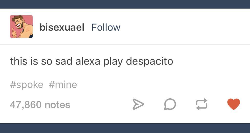Alexa, please. We need it. https://t.co/CTwirE9NEE https://t.co/7SCZcKzEXo