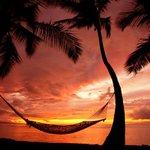 Hawaii Twitter Photo