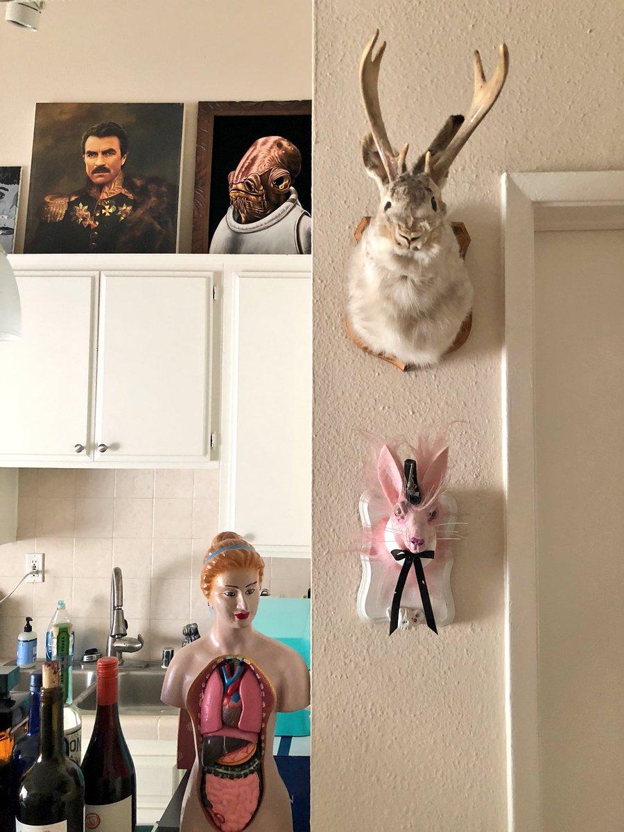 The rabbits 🐰 are finally ready to guard my loft. Pink bunny faux taxidermy art by @Creepyliz 💕