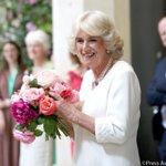 Wishing Her Royal Highness The Duchess of Cornwall a very Happy Birthday!   #HappyBirthdayHRH