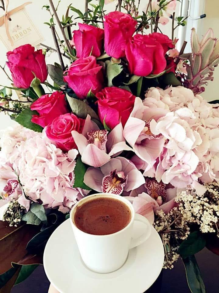 фотографии с добрым утром и прекрасным днем сопровождаются