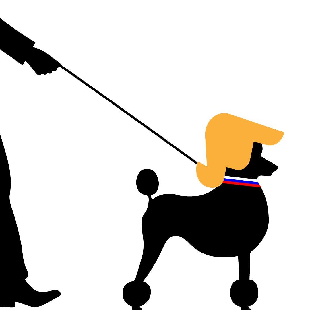 Image result for putin's poodle