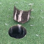 Image for the Tweet beginning: @MarkMetzger6 over the years Dryject