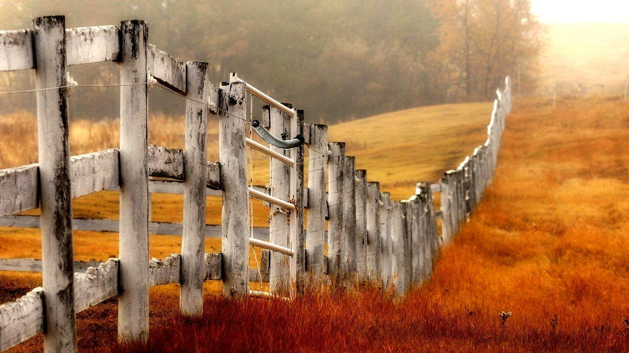 Картинки с забором, про бухло другу