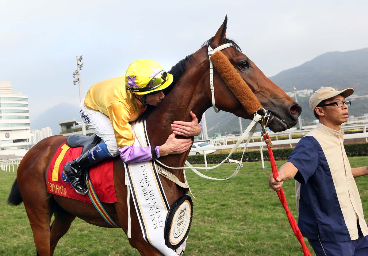 Happy retirement PENIAPHOBIA.  3 UK wins with @RichardFahey 🇬🇧🇬🇧🇬🇧 inc @weatherbysltd Super Sprint @NewburyRacing  9 HK wins with Tony Cruz 🇭🇰🇭🇰🇭🇰🇭🇰🇭🇰🇭🇰🇭🇰🇭🇰🇭🇰 inc the G1 HK Sprint #HKRacing