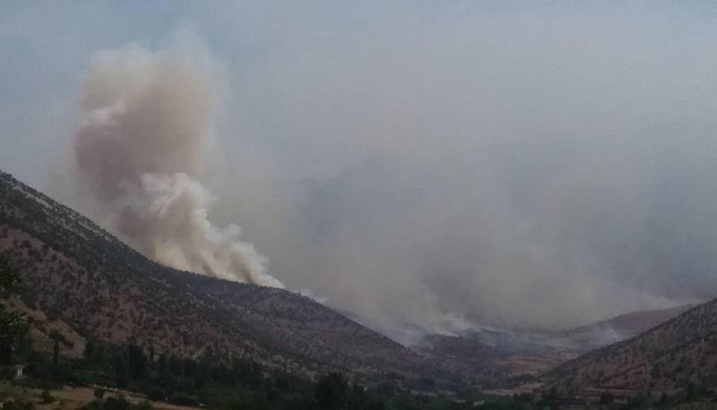 #Iranian Artilleries Bombard #Kurdistan Border Areas Again - #BasNews https://t.co/QiwBGOR6W8