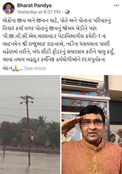 Gujarat BJP spokesperson posts salute to PGVCL lineman in Facebook post