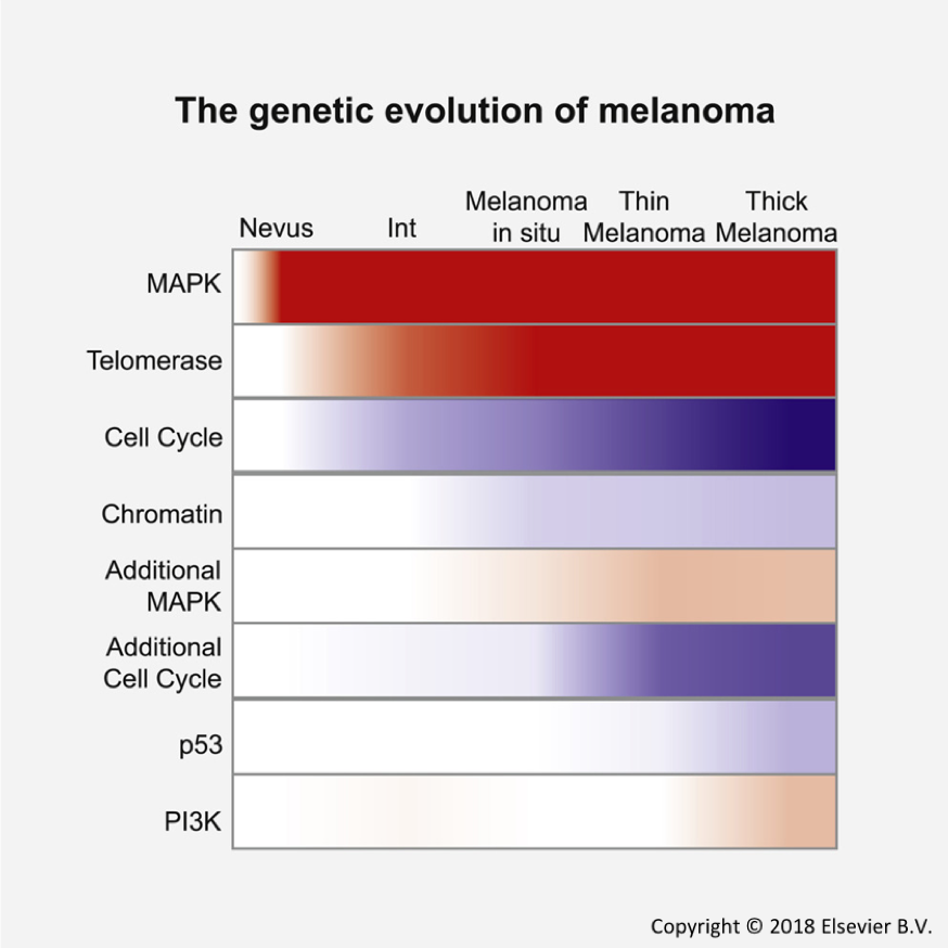 NCI Genomics on Twitter: