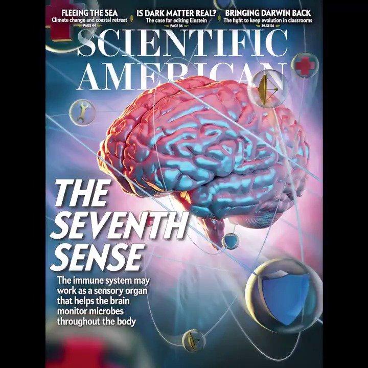 Scientific American's photo on Science