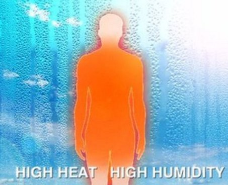 Why do our bodies sometimes struggle to cope in hot weather? https://t.co/yDamVKgWPv Jo