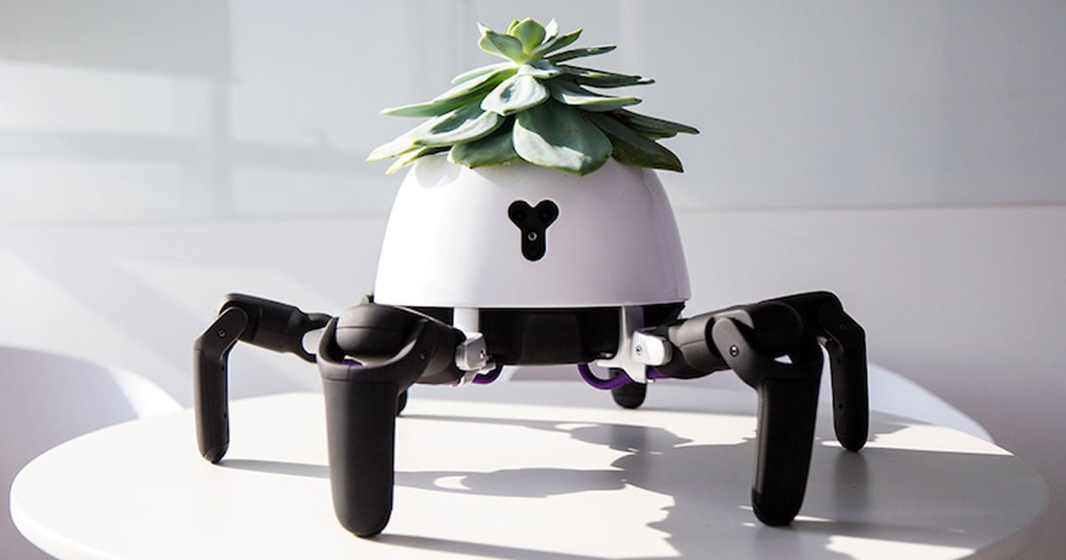 Robotic Smart Planter Chases the Sun to Keep Its Succulent in Sunlight 9gag.com/gag/ajEG2x1?re…
