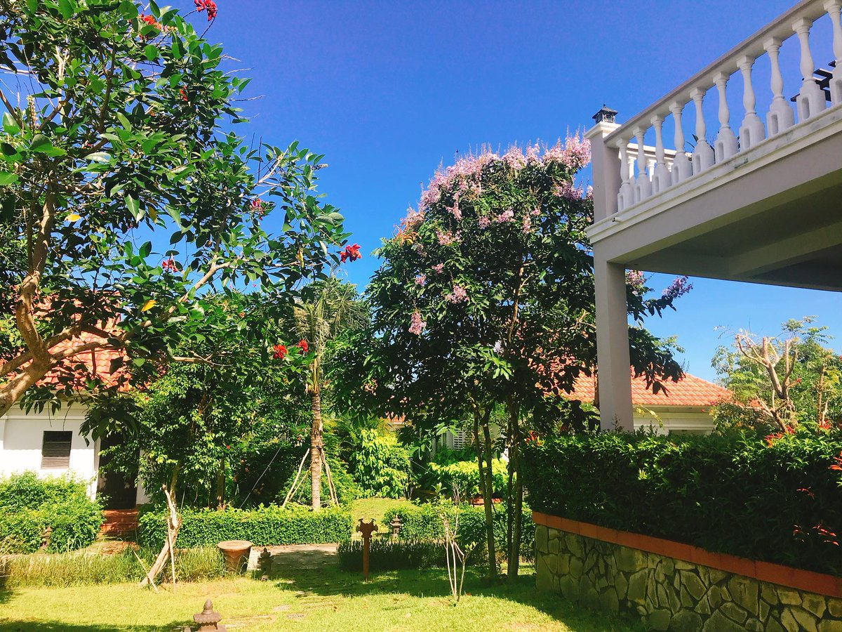 A garden corner at #MercuryPQresort on a sunny day.  For more information, please visit our website at https://t.co/MTuujMWL1k    For any reservations, please contact us at:  📧Email: re@mercuryphuquoc.vn  ☎️Tel: (+84) 297 6263 999 https://t.co/T9BKLMOoEm