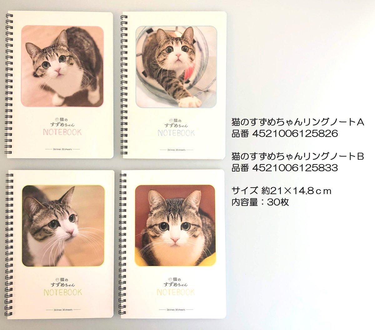 test ツイッターメディア - 本日7月18日(水)より順次発売開始★ 「 #猫のすずめちゃん 」コラボ商品をご紹介します!!  第2弾はオフィスや学校でも大活躍のノートやメモ♪  #キャンドゥ #100均 #猫 #文房具 https://t.co/jwh0OeXVPB