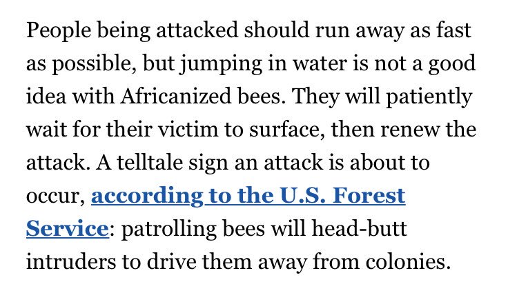 How aggressive are Africanized bees? This aggressive: https://t.co/lw8lFrH9sw