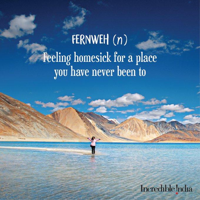 Today's travel motivation. #ThursdayThoughts #IncredibleIndia @alphonstourism @tourismgoi Photo