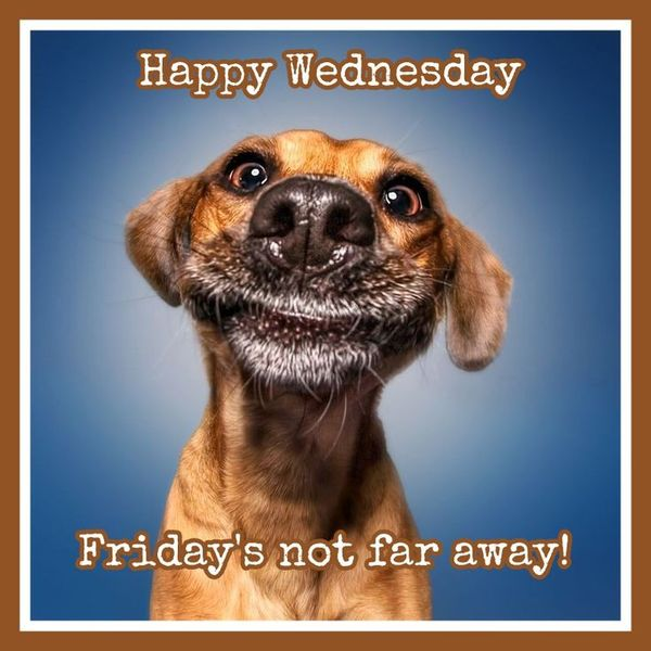 test Twitter Media - Have an awesome Wednesday!! #WednesdayWisdom #wednesday #humpday #almostfriday https://t.co/5xLjCCVDbv