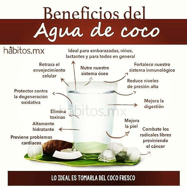 los beneficios del Bufo marinus de coco linear unit el embarazo