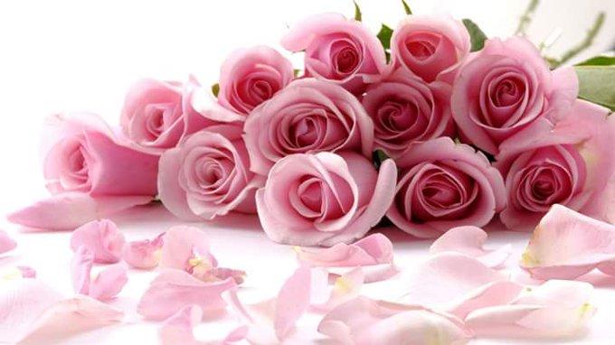 Happy birthday day priyanka chopra