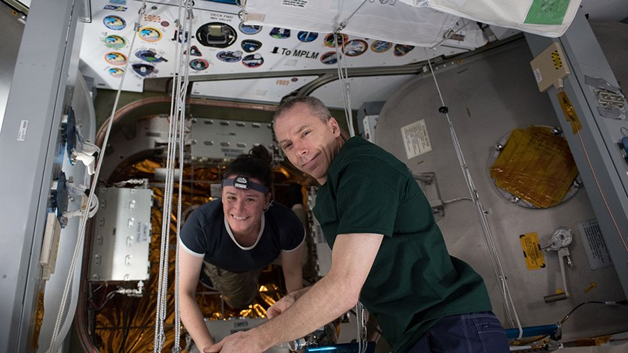 Cancer and rodent studies were on the Exp 56 crew's timeline today helping doctors and scientists improve the health of humans in space and on Earth. https://t.co/pj26IcgFN4
