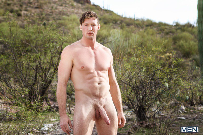 Natural male dick