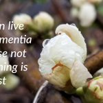 #Dementia is an epidemic and a care challenge. We need to learn how to live with it.  #Alzheimers #DementiaCare #Carers #Caregiving
