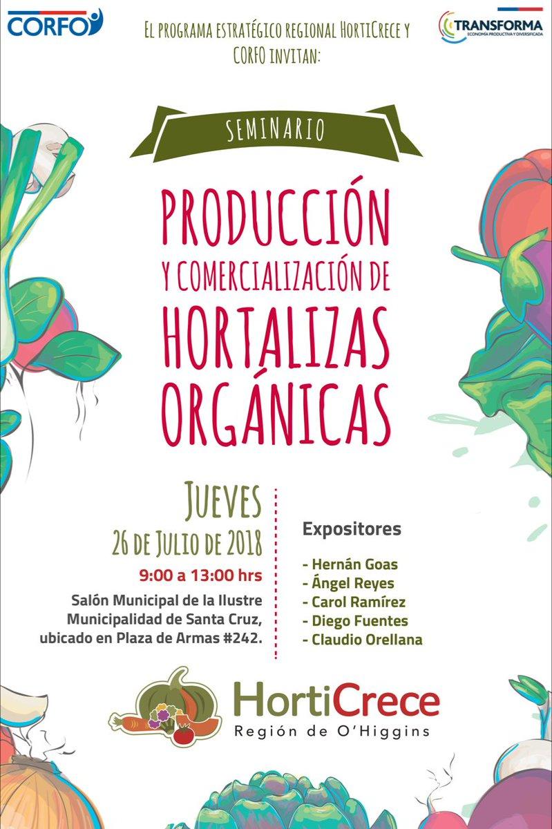 Hola amigos de Transforma O'Higgins HortiCrece, el 26 de julio desde las 9.00 horas se realizará el primer seminario 2018 del PER.@Transforma_CL https://t.co/VPCk6wKrcq