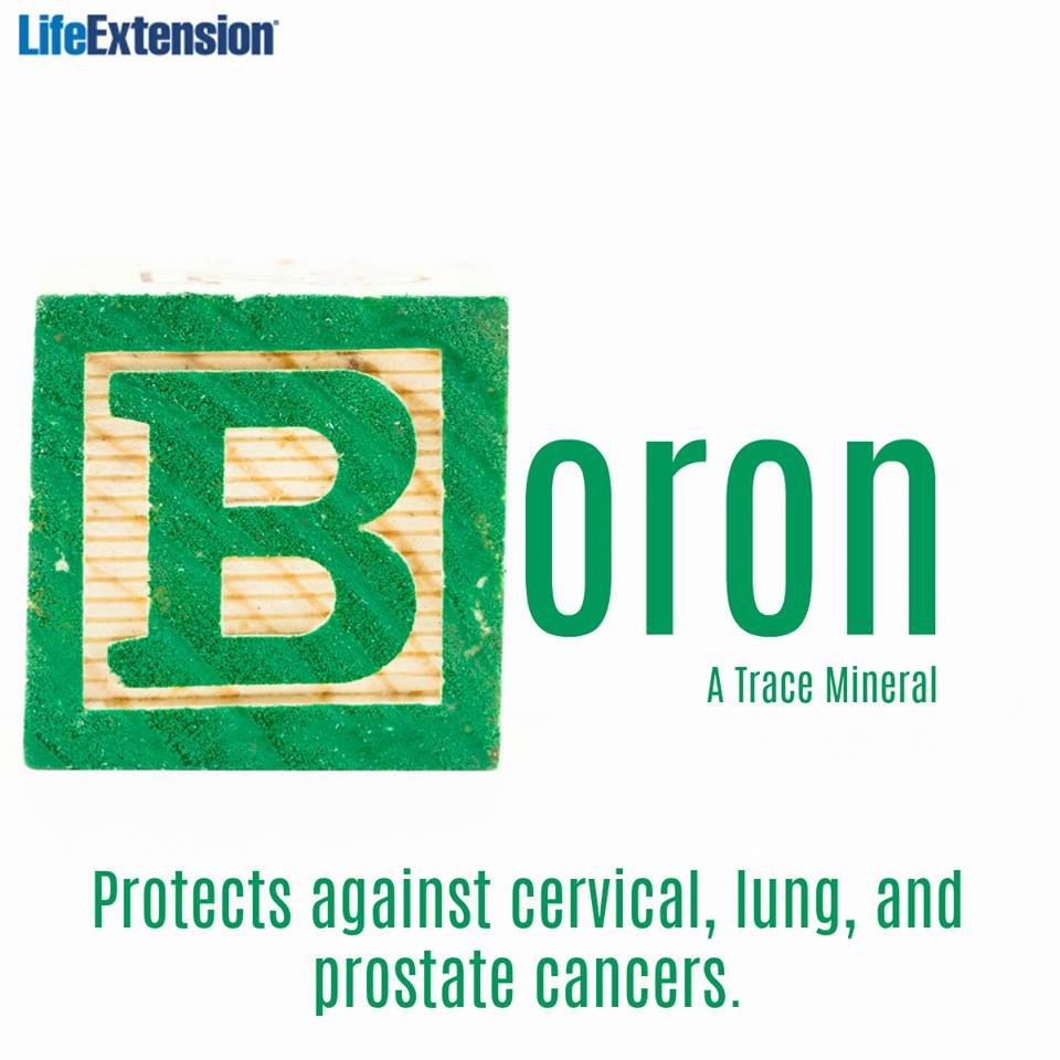 boron intake and prostate cancer