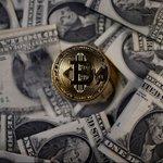 #Crypto Twitter Photo
