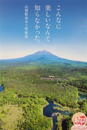 【啓発】青木ケ原樹海「自殺の名所」イメージ払拭へ、山梨県がポスター作成 https://t.co/OCIsfvCHcx  ポスターは富士山と精進湖の間に広がる樹海を撮影。「こんなに美しいなんて知らなかった。」のコピーを掲げた。
