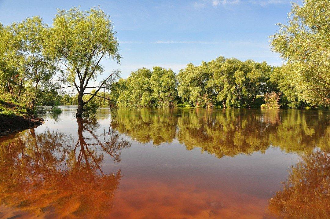 фото озера омское истока реки омь также часто