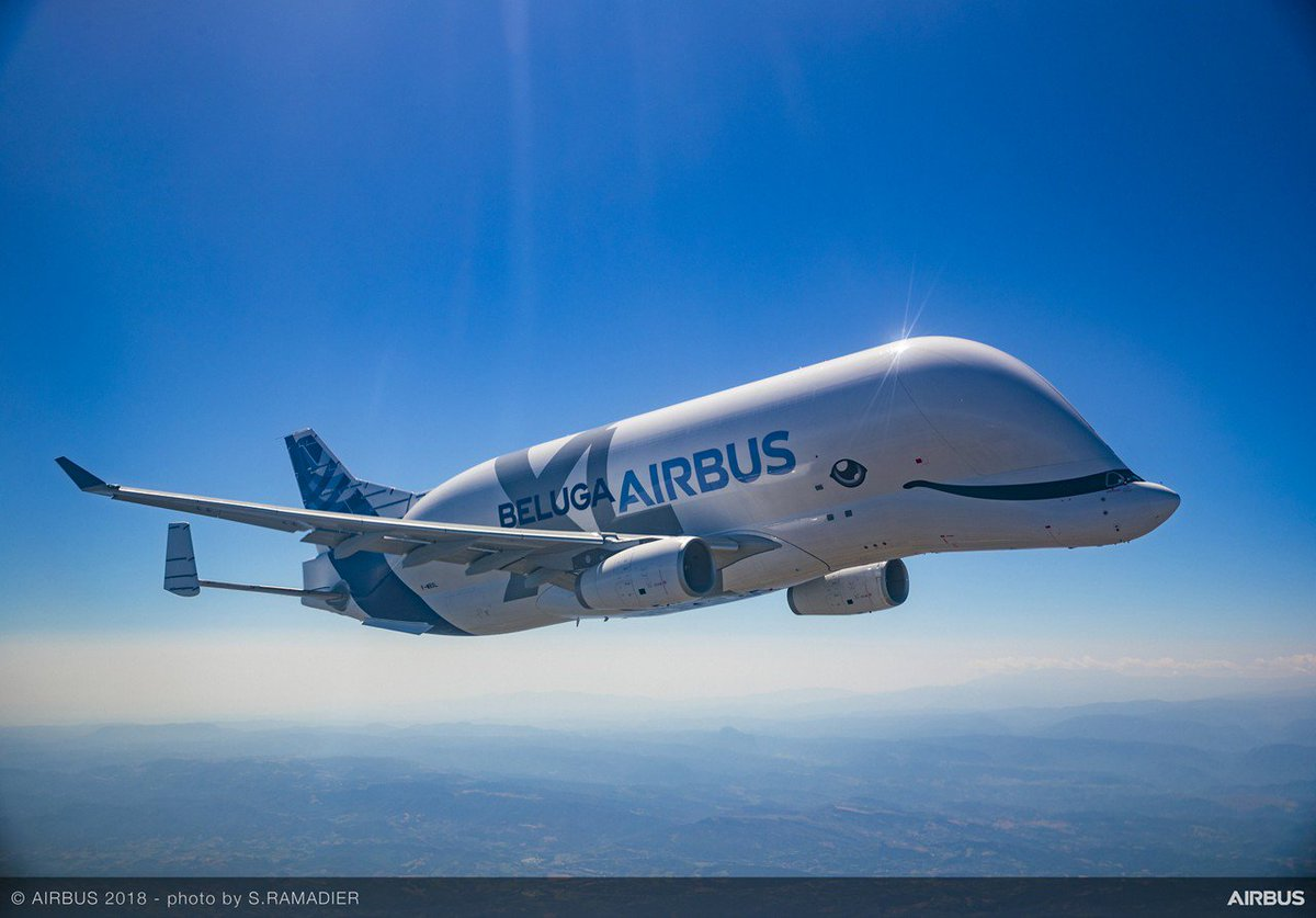 OK, a last one for today... unless you give it XL ❤️! #BelugaXL