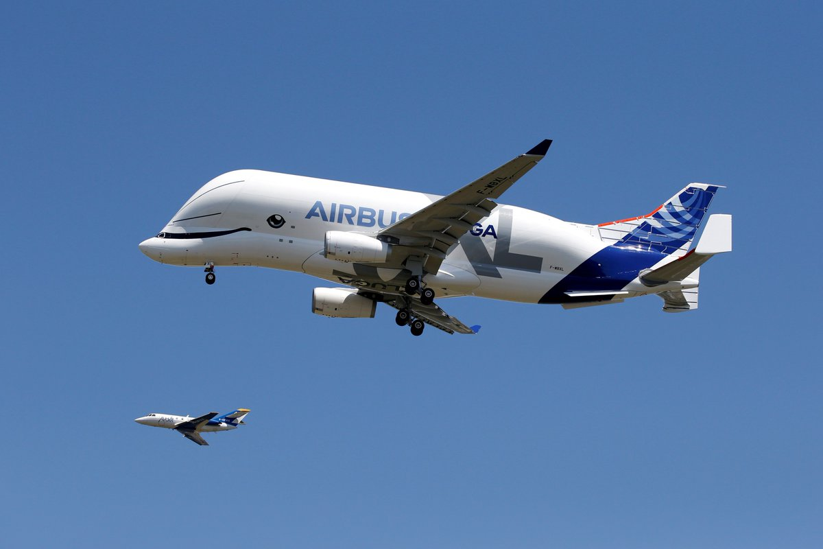 This new Airbus airplane model, which will be used to transport plane parts, looks like a Beluga whale: