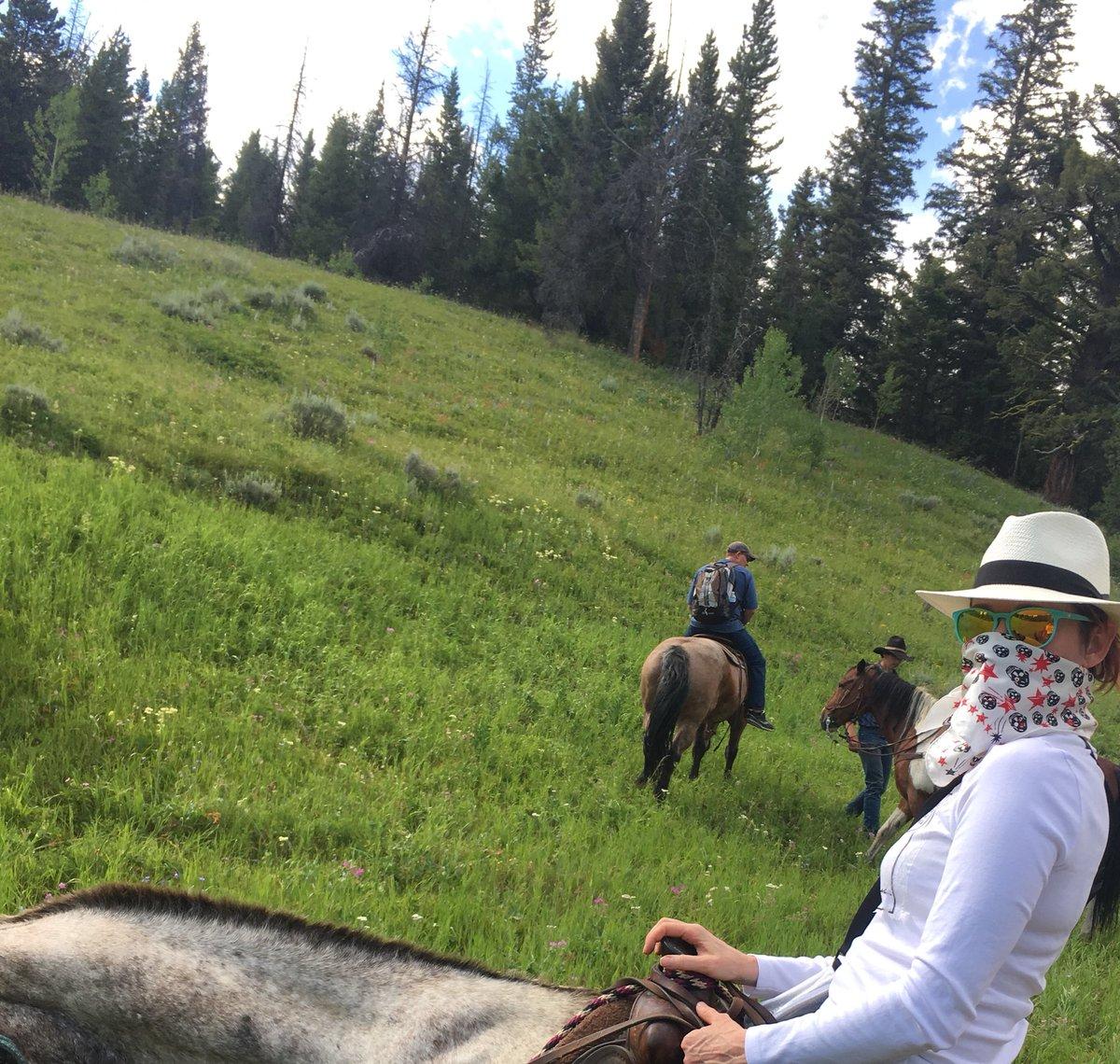 Outdoor ass hole riding