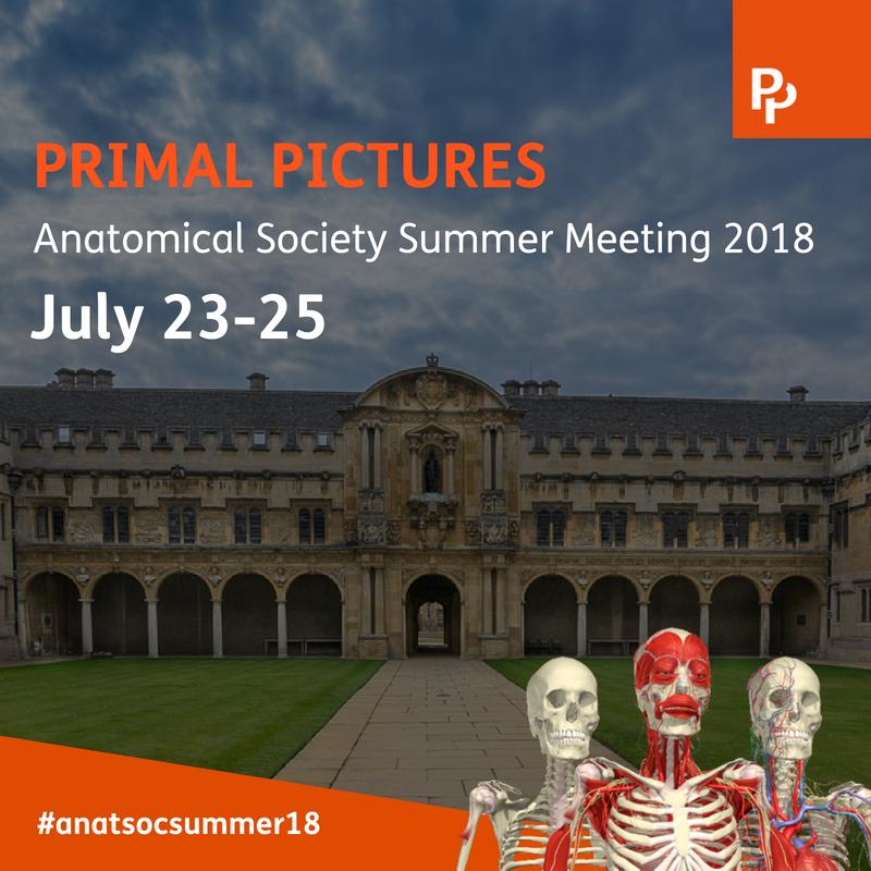 Primal Pictures (@PrimalPictures)   Twitter