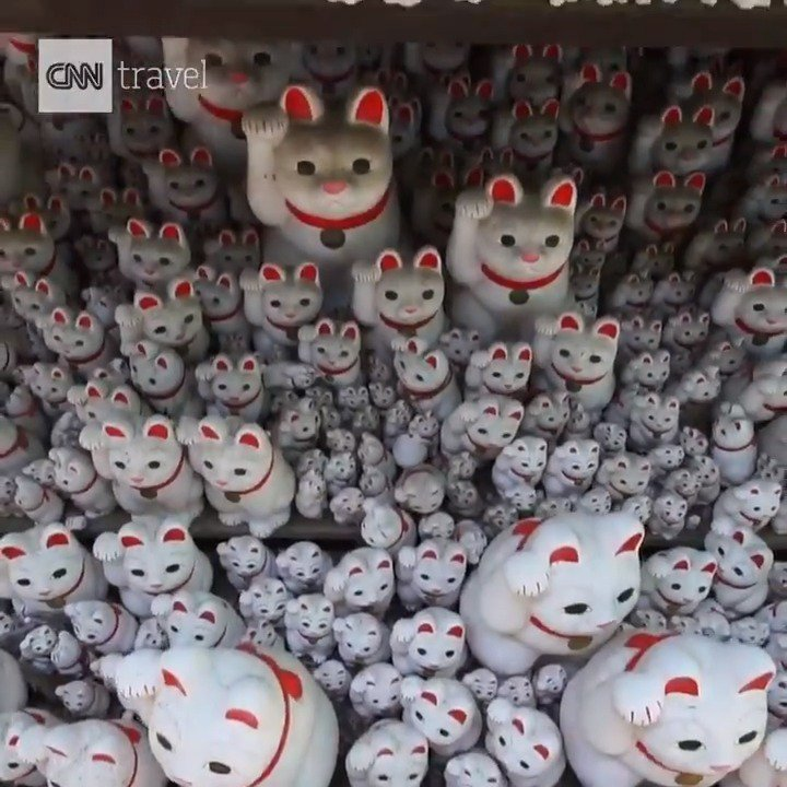 Did you know that Lucky Cats have their own temple in Tokyo? Step inside: https://t.co/JC2Bzbzl57 https://t.co/bMUwBzXfzP