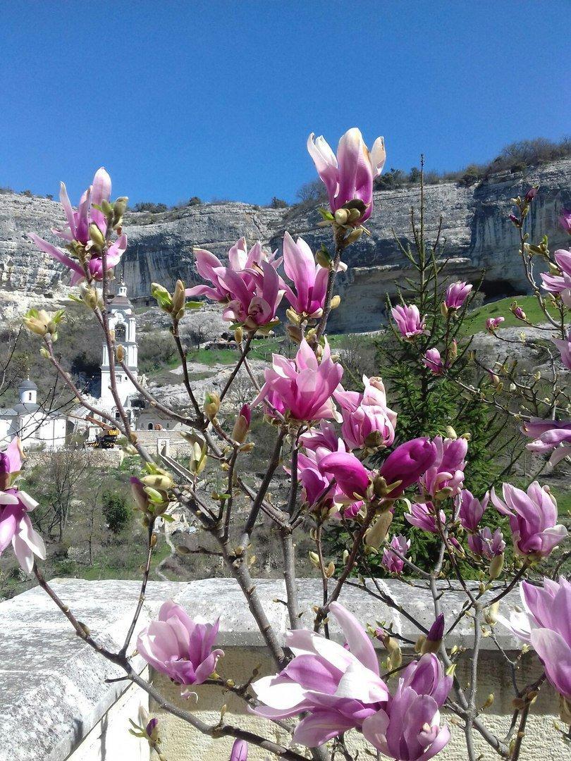 бахчисарай фото весна где