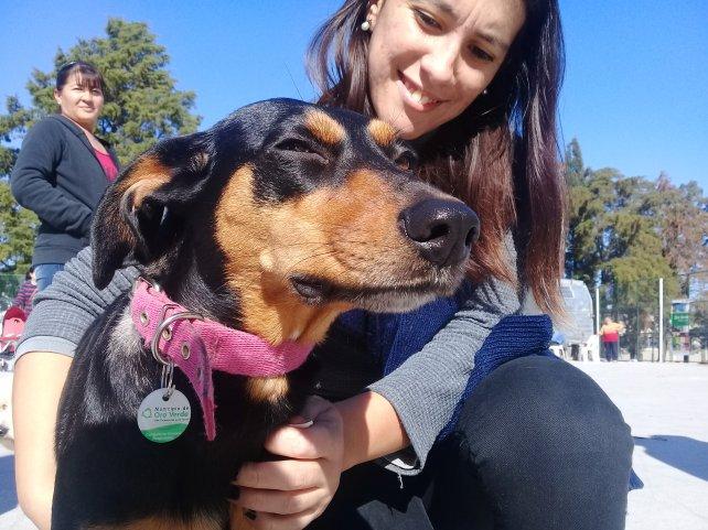 Fallo judicial inédito en Entre Ríos declaró a los animales