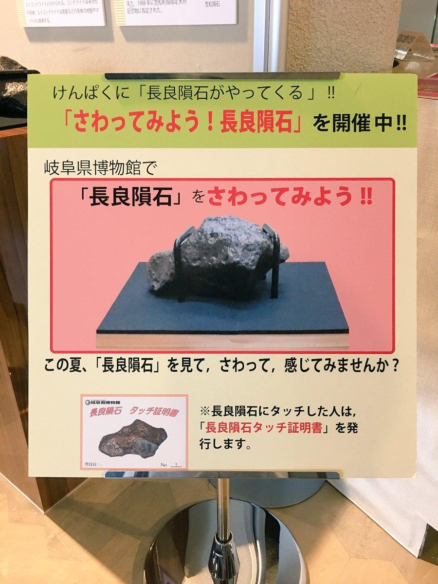 """岐阜県博物館 on Twitter: """"【常..."""