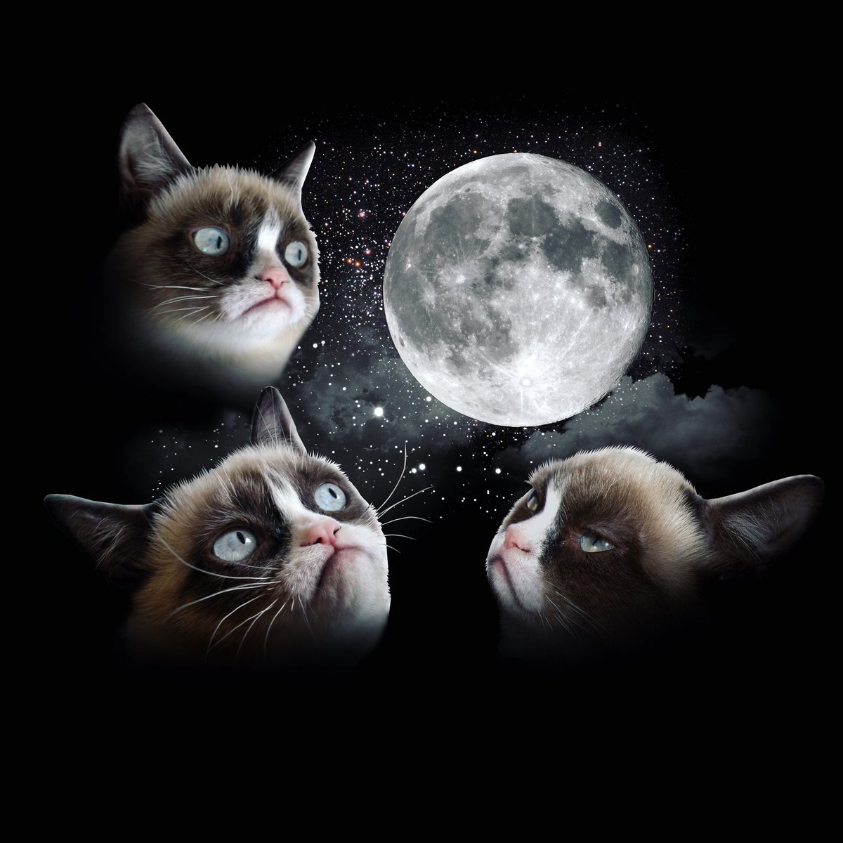 Worst #MoonDay Ever