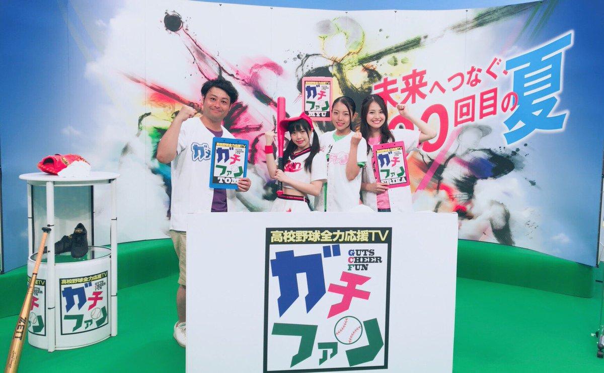 高校 2019 野球 テレビ 千葉