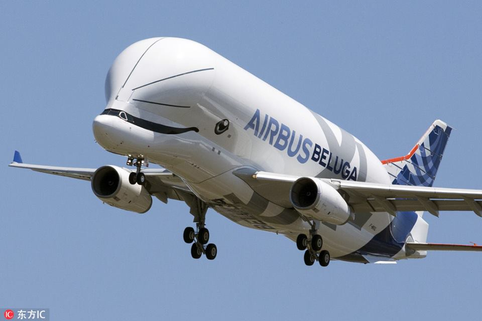 Whale in the sky: #Beluga XL, the latest large transport aircraft model of #Airbus, has successfully completed its first flight in southwest #France. The massive aircraft is about 30% bigger than the Belugas ST and it is expected to start operation in 2019.