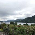 Scotland Twitter Photo