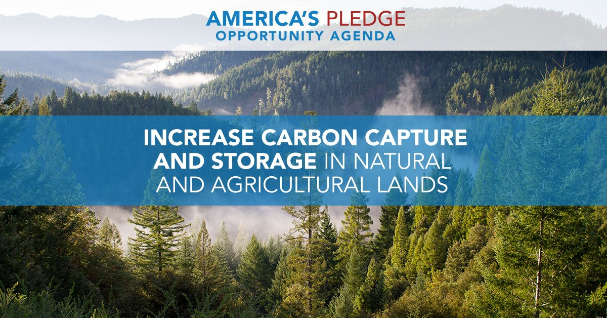 Reflecting the majority of Americans, cities, states, & businesses have decided  the#WeAreStillIn Paris Agreement.  rel@AmericasPledgeeased 10 key areas where we can establish a low-carbon future. Nature itself provides a lot of opportunity: https://t.co/Sn7vAUa6wa