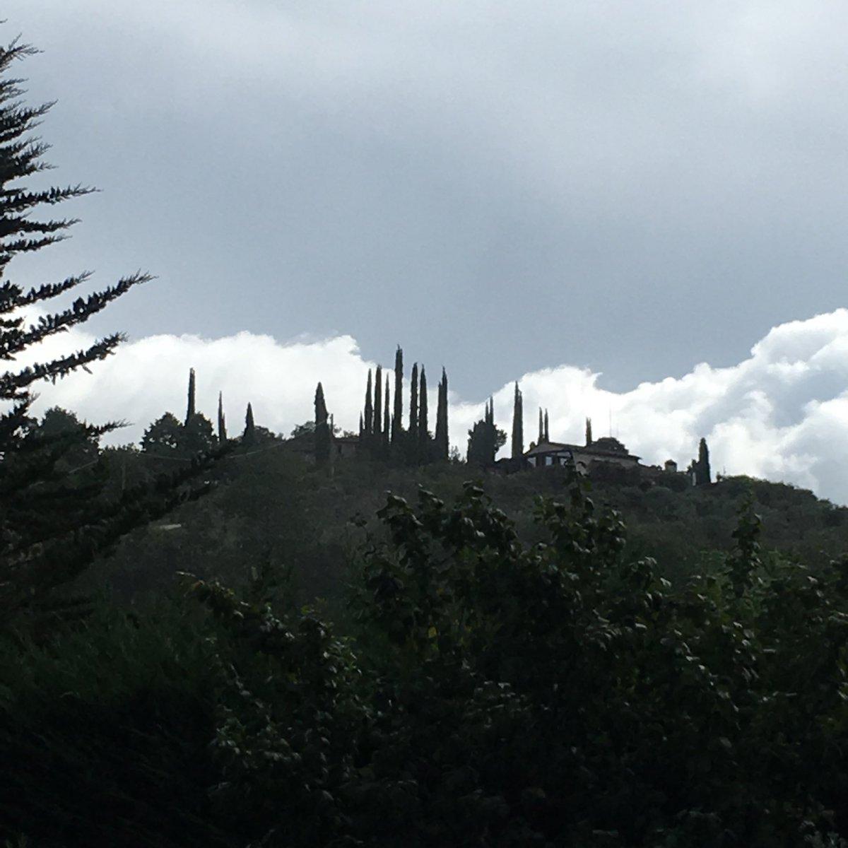 Alan Paul Bush On Twitter Cypress Trees On A Hill